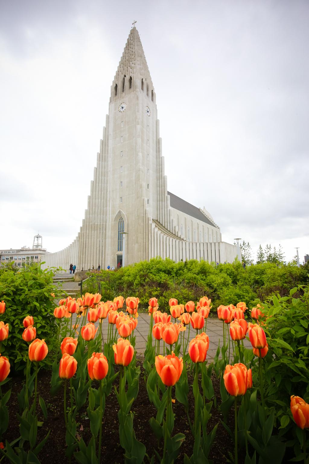 Iceland in Summer-22