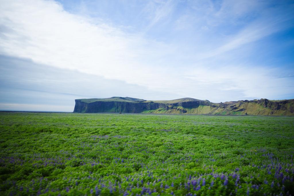 Iceland in Summer-59