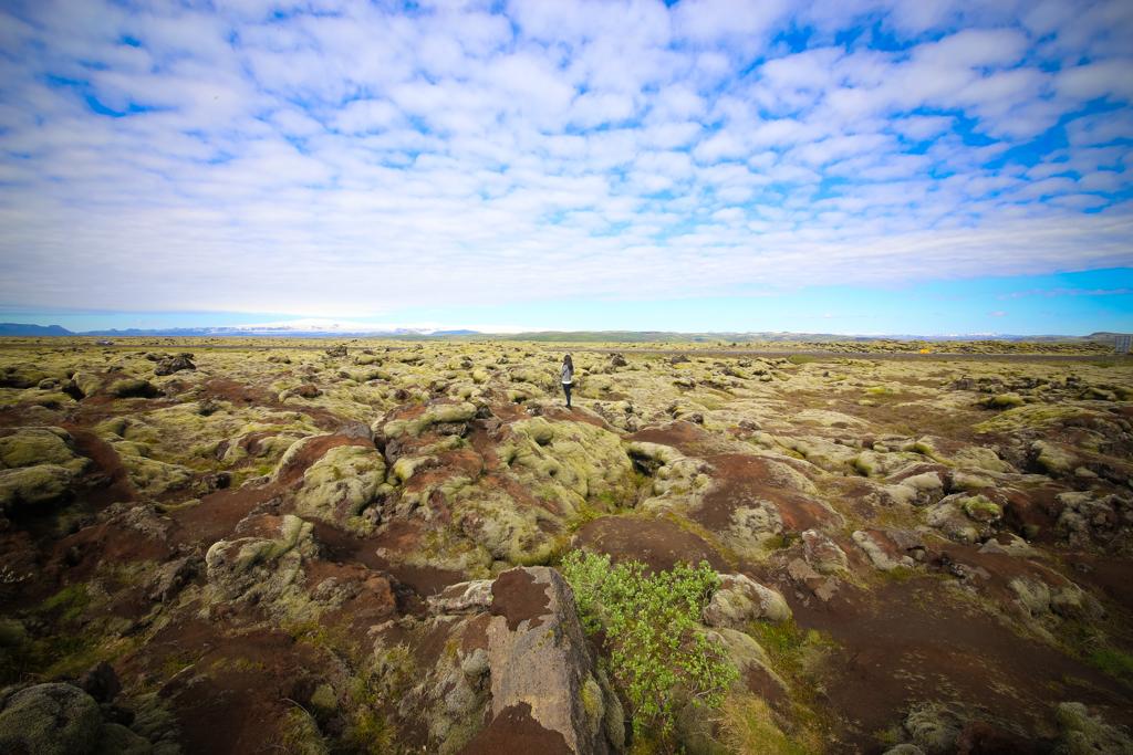 Iceland in Summer-61